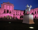 3. 	SC178499 	MFA/Breast Cancer Awareness Pink Illumination Ceremony 	October 4, 2006 	*Photograph © Museum of Fine Arts, Boston